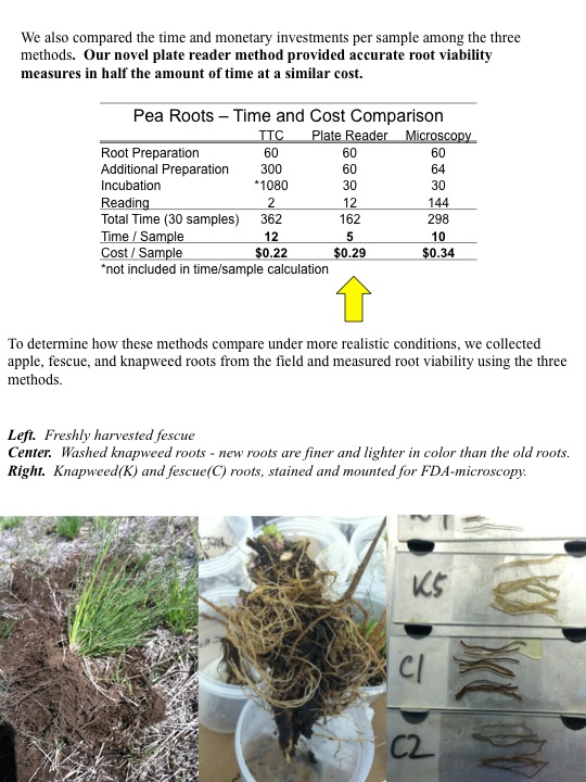 We also compared the time and monetary investments per sample among the three methods. Our novel plate reader method provided accurate root viability measures in half the amount of time at a similar cost.